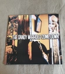 Buy this rare Dsandy Warhole's record by clicking here